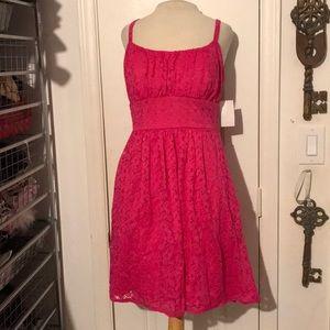 NWT B.Smart size 8 Fuchsia Pink lace sun dress